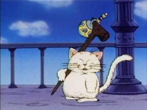 thần mèo korin