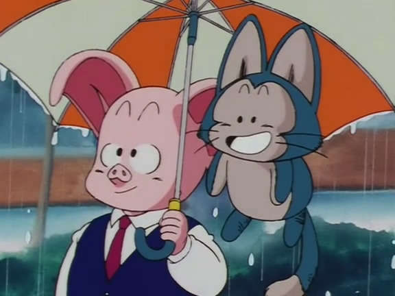 Image result for oolong vs Puar