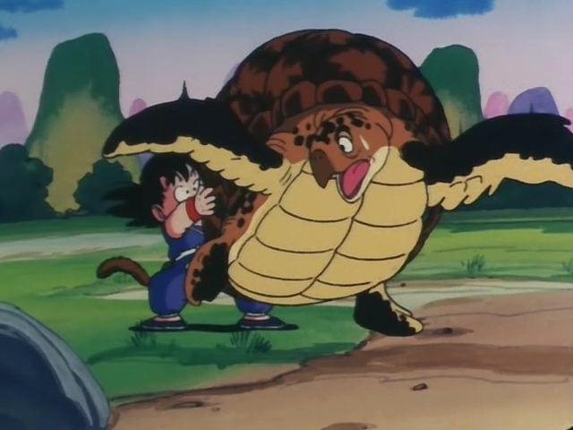 Rùa của Master Roshi
